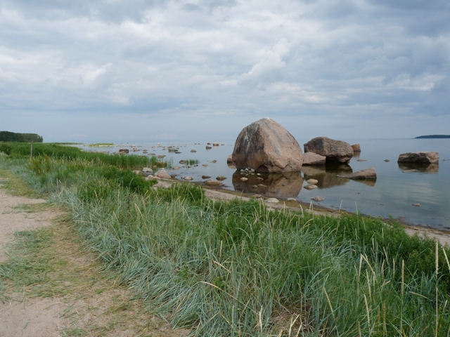 06_findlinge_laheema nationalpark.jpg